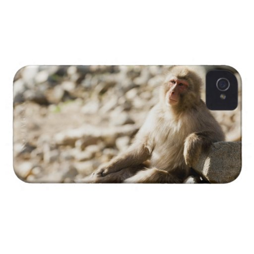 Yamanouchi, Chubu, prefectura de Nagano, Japón 2 Case-Mate iPhone 4 Carcasa