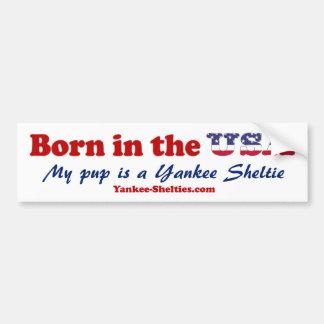 Yankee Shelties Bumper Sticker