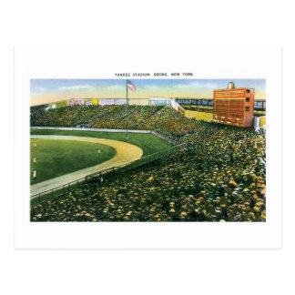 Yankee Stadium, NY Postcard