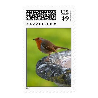 Yard Boss Postage Stamp