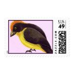 Yariguies Stamp