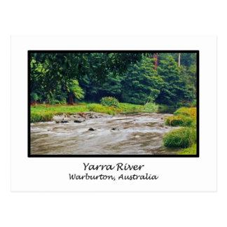 Yarra River, Warburton, Australia Postcard