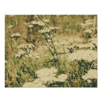 Yarrow Field, Retro Olive Green Colors Poster