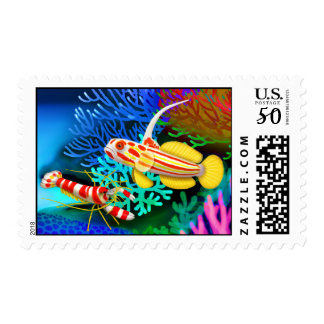 Yasha Hase Goby & Randalls Pistol Shrimp Postage