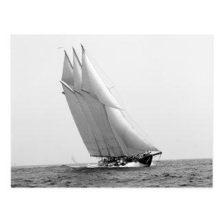 Yate que compite con Atlantic, 1904 Postal