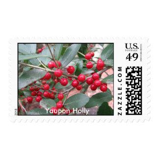 Yaupon Holly Postage