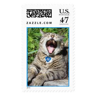 yawn postage