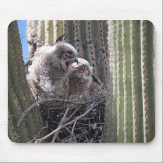 Yawning Baby Owls Mouse Pad
