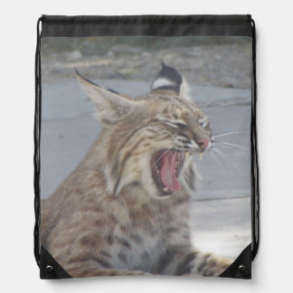 Yawning Bobcat Drawstring Backpack