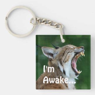 Yawning Bobcat Keychain