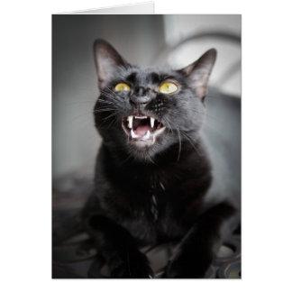 Yawning Cat Cards