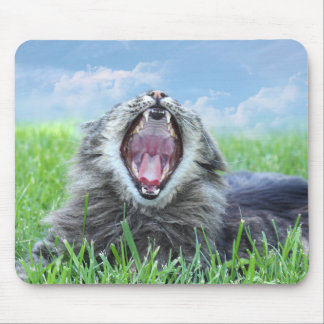 Yawning cat mouse pad