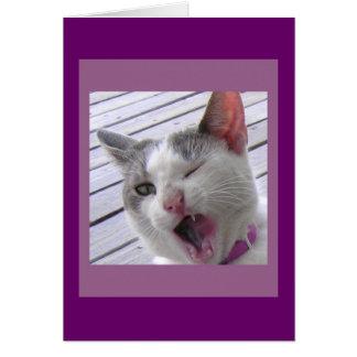 Yawning Kitten Card