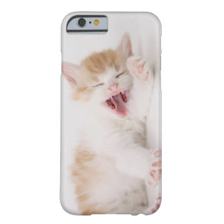 Yawning Kitten on White Background. Barely There iPhone 6 Case
