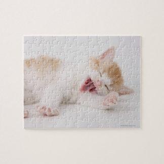 Yawning Kitten on White Background. Jigsaw Puzzle
