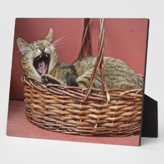 Yawning Kitty Cat Plaque