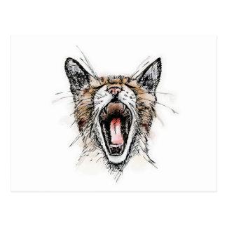 Yawning Kitty Postcard