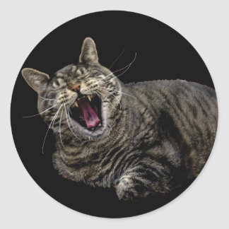 Yawning Pepe the cat stickers
