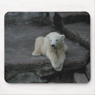 Yawning Polar bear cub Mouse Pad