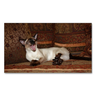 Yawning Siamese Cat Magnetic Business Cards (Pack Of 25)