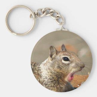 Yawning Squirrel Keychain