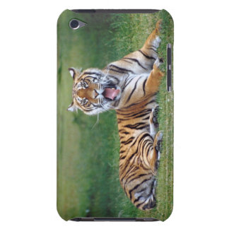 Yawning Tiger iPod Touch Case-Mate Case