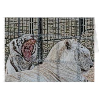 Yawning white tiger next to other cat sketch style stationery note card