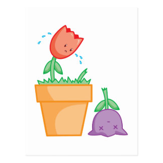 Yay For Color Two Tulips in a Pot Postcards
