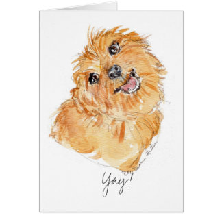 ¡YAy! pensamientos b'day del perro de la tarjeta Y