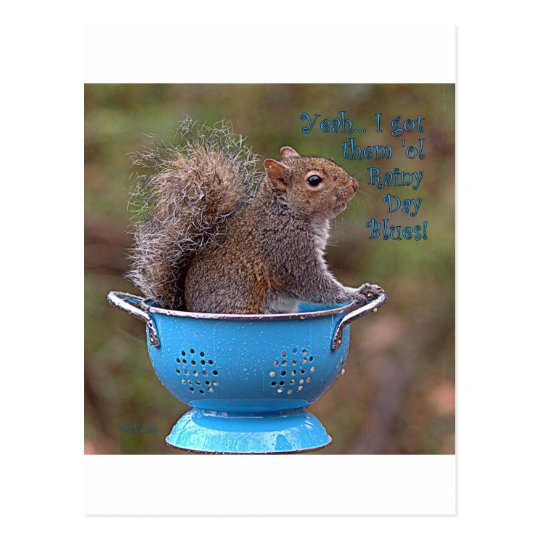 Yeah … I got them 'ol Rainy Day Blues Postcard