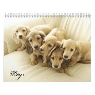 Year of Dogs Calendars
