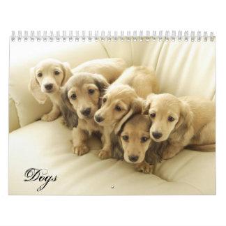 Year of Dogs Calendar