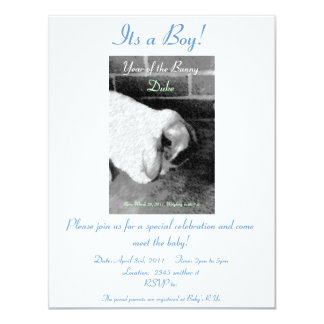 Year of the Bunny Meet the Baby Invitation
