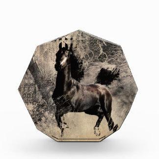 Year of the Horse 2014 - Chinese Painting Art Acrylic Award