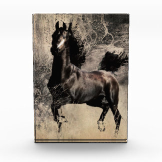 Year of the Horse 2014 - Chinese Painting Art Awards