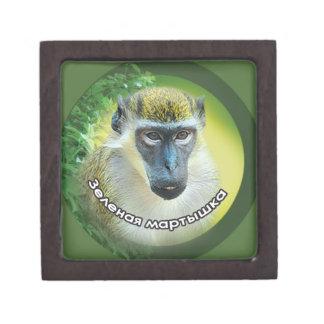 Year of the Monkey. Gift Box