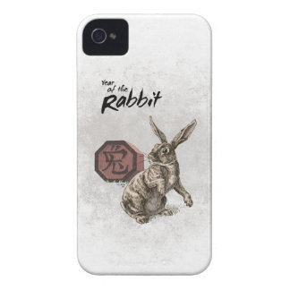 Year of the Rabbit Chinese Zodiac Art iPhone 4 Case-Mate Cases