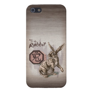 Year of the Rabbit Chinese Zodiac Art Covers For iPhone 5