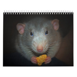Year of the Rat Calander Calendar