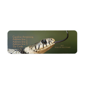 Year of the snake 2013 custom address labels