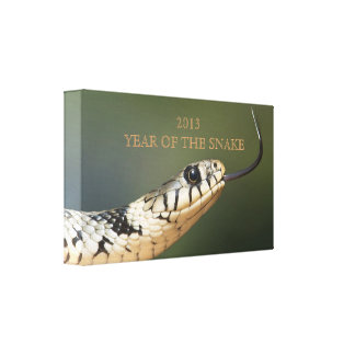 Year of the snake 2013 custom snake photo, gift canvas print
