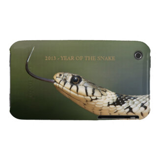 Year of the snake 2013 custom snake photo, gift Case-Mate iPhone 3 cases