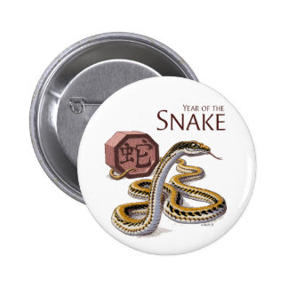 Year of the Snake Chinese Zodiac Pins