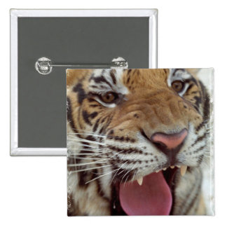 Year of the Tiger Square Pin