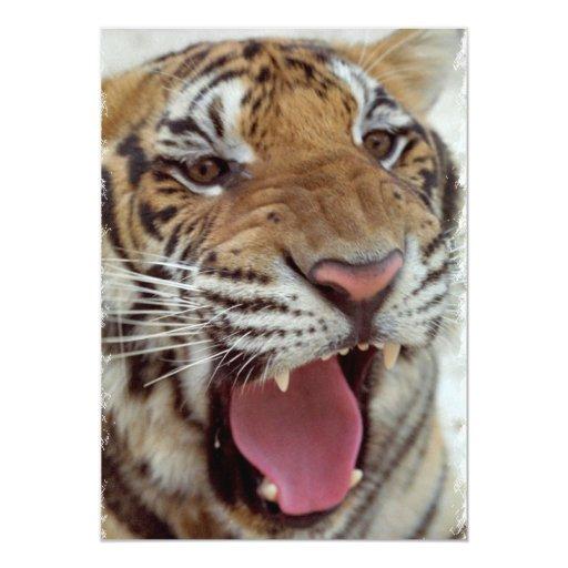 Year of Tiger Invitation