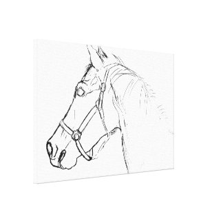 YEARLING 24 x 16 Canvas Print