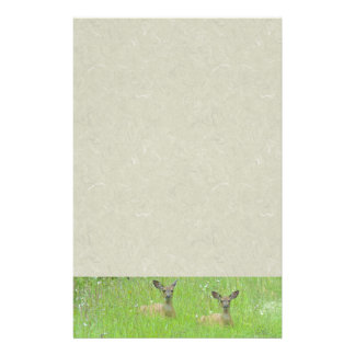 Yearling Deer Fawn Wildlife Animals Stationery