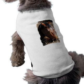 Yearling  Pet Shirt