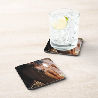 Yearling  Set of Coasters