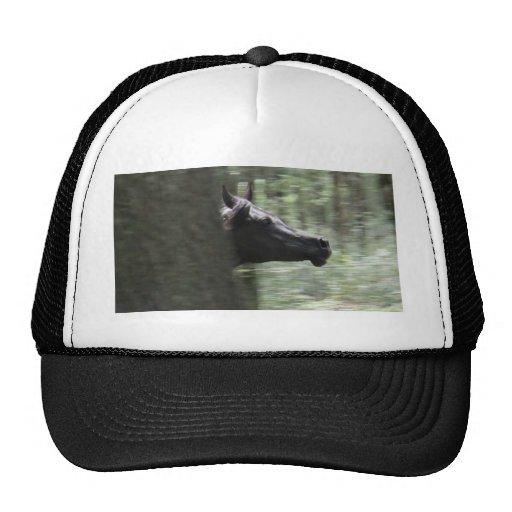Yegua árabe negra galopante gorra